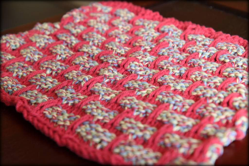 dishcloths 5