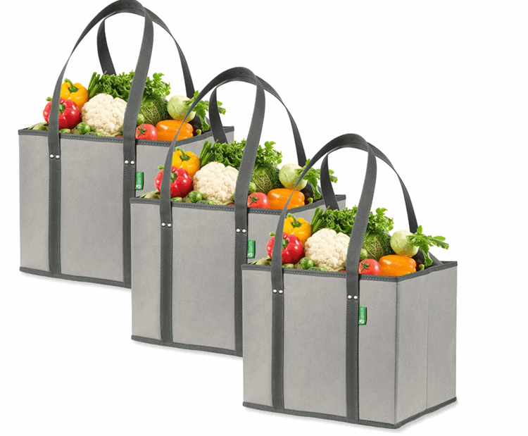 Collapsible Reusable Bags for ALDI