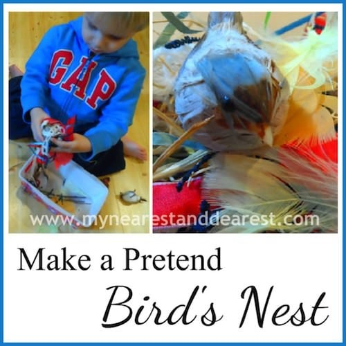Make-a-Pretend-Birds-Nest