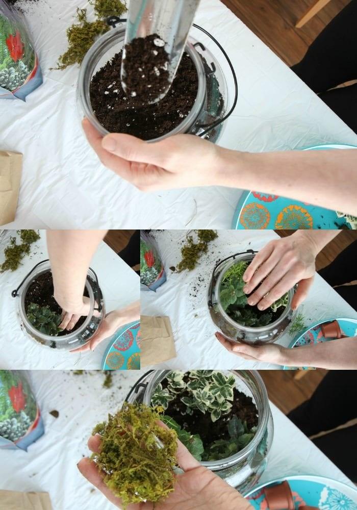 How to Make a DIY Terrarium from MomAdvice.com.