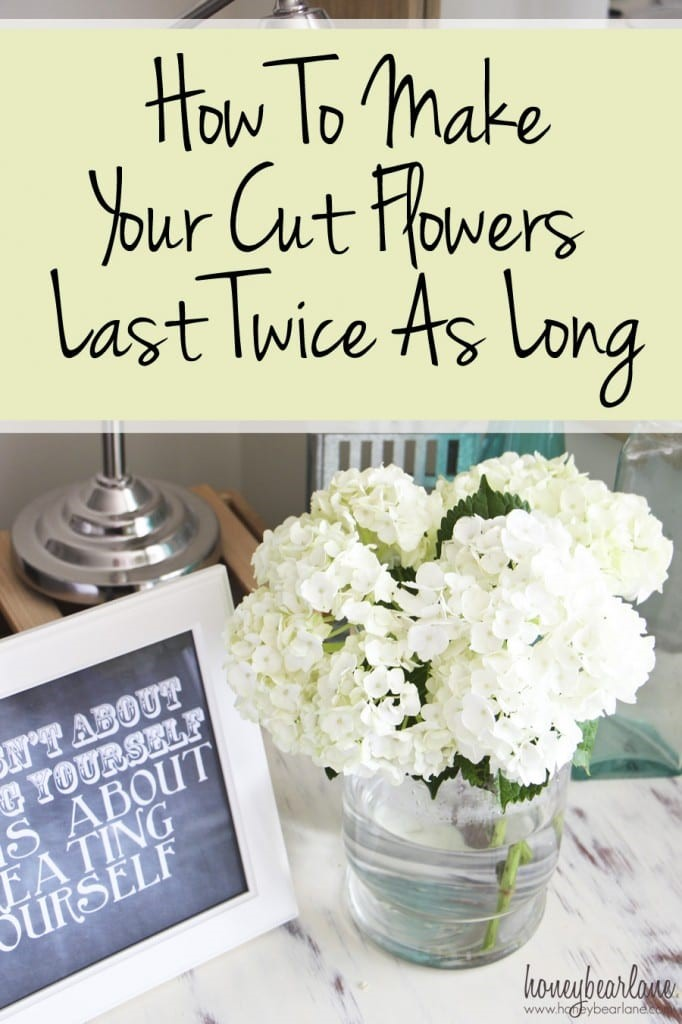 make your cut flowers last longer