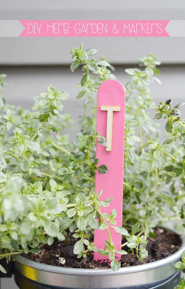 DIY Herb Garden with DIY Herb Markers