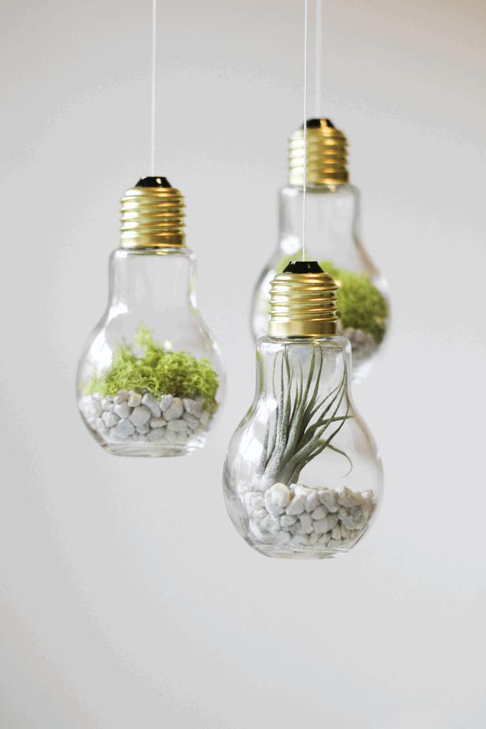 DIY Lightbulb Terrariums via CladandCloth