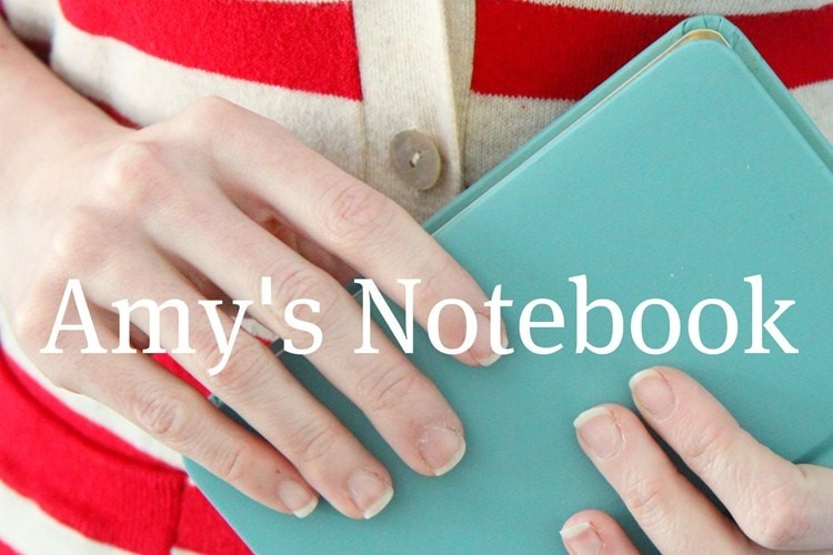 amys_notebook