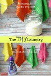 The DIY Laundry-Detergent and Softener Sheets