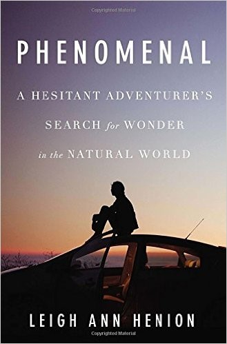 Phenomenal by Leigh Ann Henion