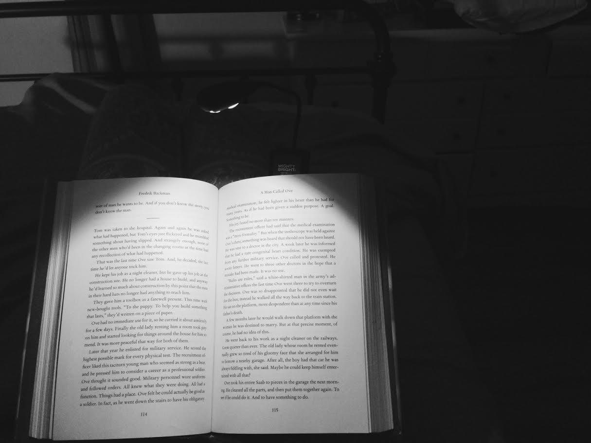 Mighty Bright Book Light
