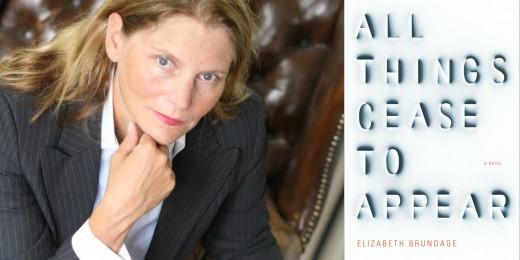 Sundays With Writers: All Things Cease to Appear by Elizabeth ...