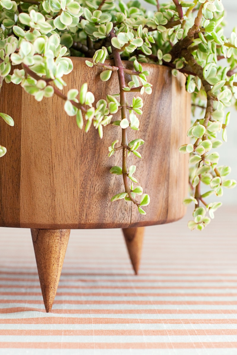 DIY Wooden Planter from A Beautiful Mess