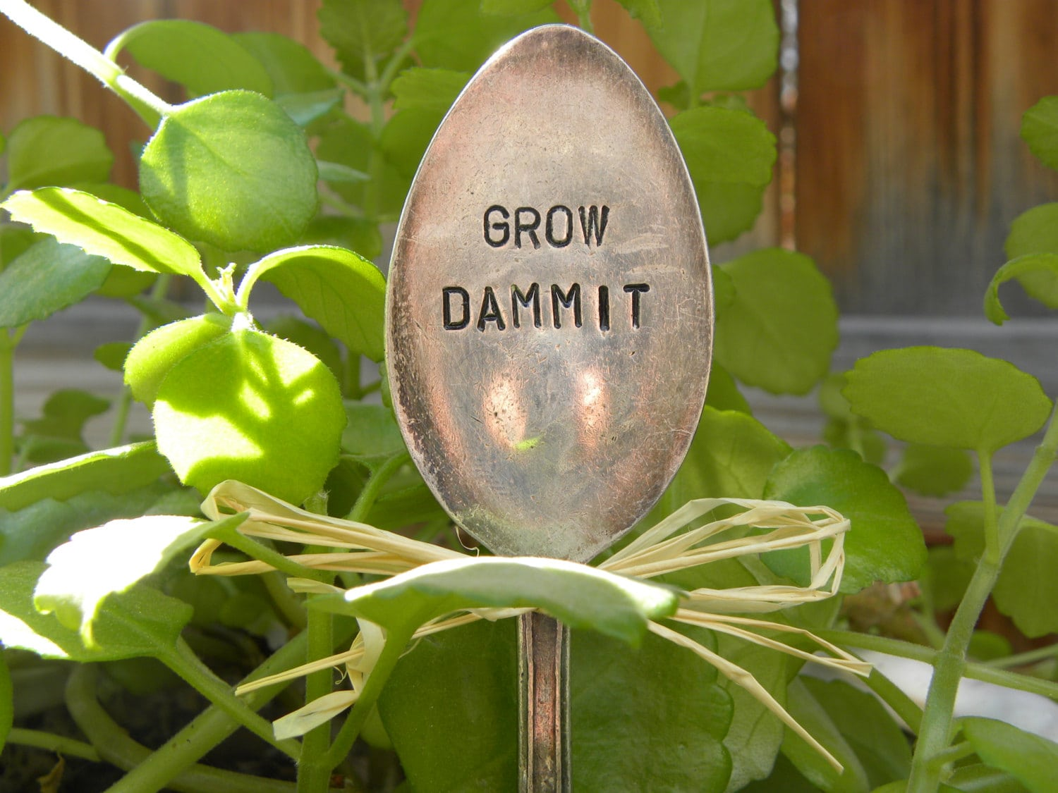 grow dammit garden marker
