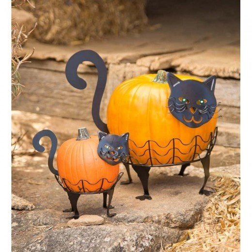 cat pumpkin holders